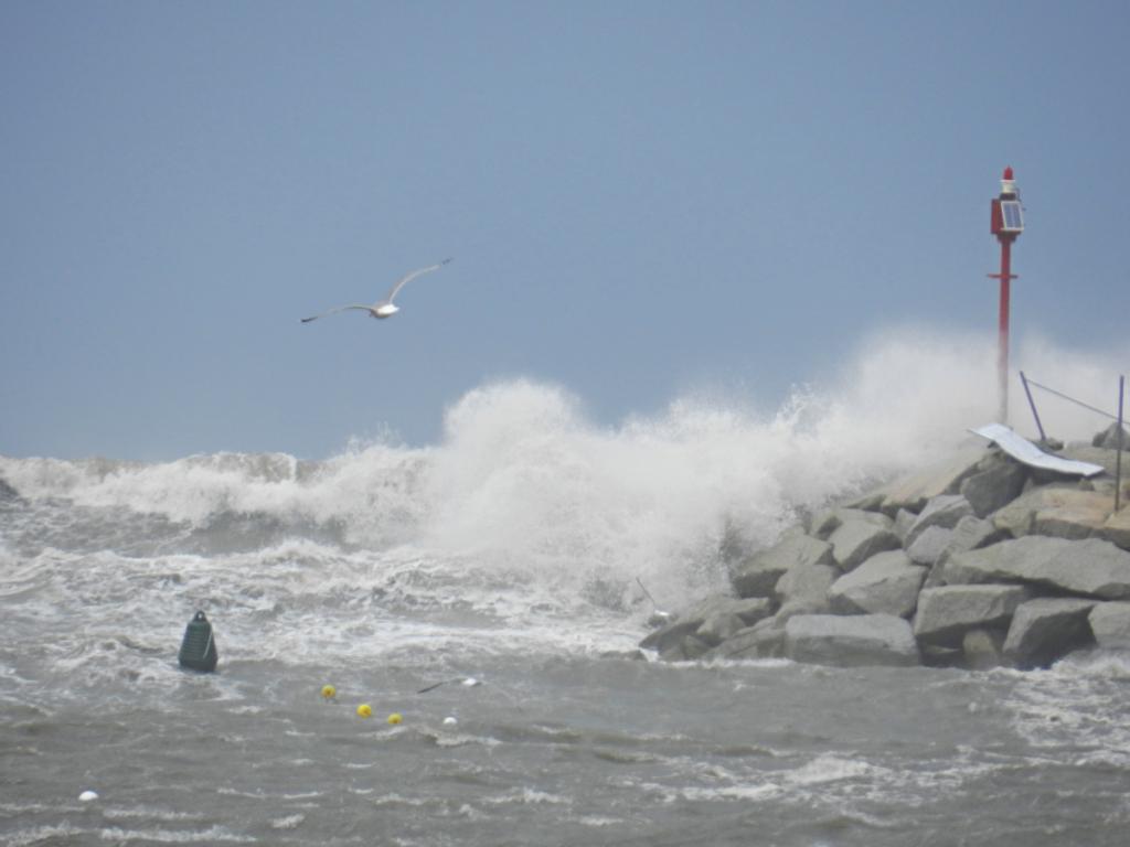 Sturm aus Nord: selten, aber wenn, dann heftig